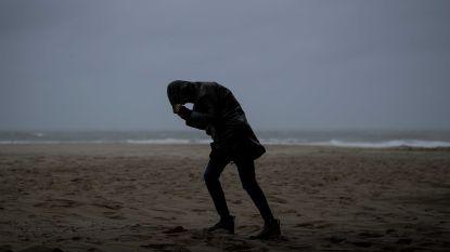 """""""Officieel storm in het land"""": felle rukwinden verwacht, KMI waarschuwt met code geel"""