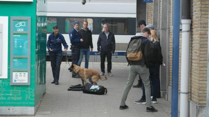 Drugsactie aan station en in scholen
