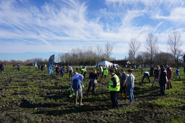 Ruim 300 vrijwilligers waren van de partij onder een stralende zon