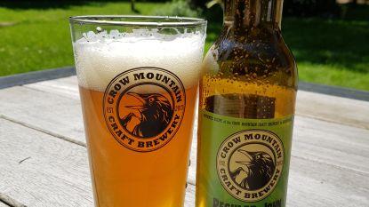 """Crow Mountain Brewery pakt uit met webshop én langverwachte eigen IPA: """"Nieuwe hopsoort zorgt voor een aparte smaak"""""""