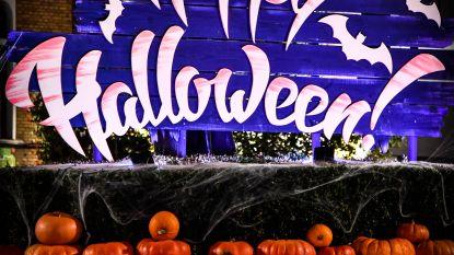 Halloweenwandeling en spokenbal in De Pastorie
