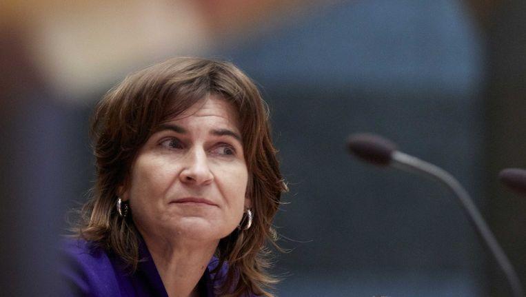 Minister voor Buitenlandse Handel en Ontwikkelingssamenwerking Lilianne Ploumen Beeld ANP