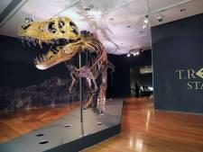 31 millions de dollars pour un T-Rex