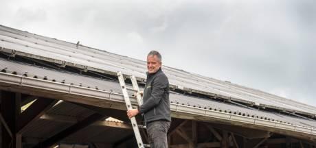 Hobbelige weg naar nieuw zonnepark duurt voor Theo van kaasboerderij De Diervoort al langer dan 10 jaar
