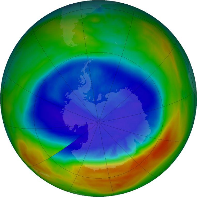 Het gat boven Antarctica, zoals de Nasa dat op 11 september vorig jaar nog mat. Blauw staat voor lage ozonconcentraties. Beeld rv