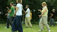 Zomerse sessies tai chi in Sint-Michielspark