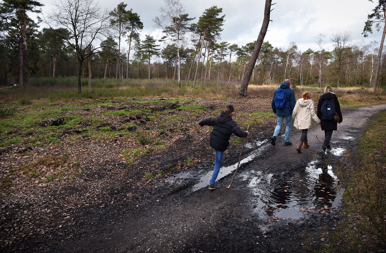 Een gezin wandelt langs een kaalgekapt bosperceel bij Amerongen.