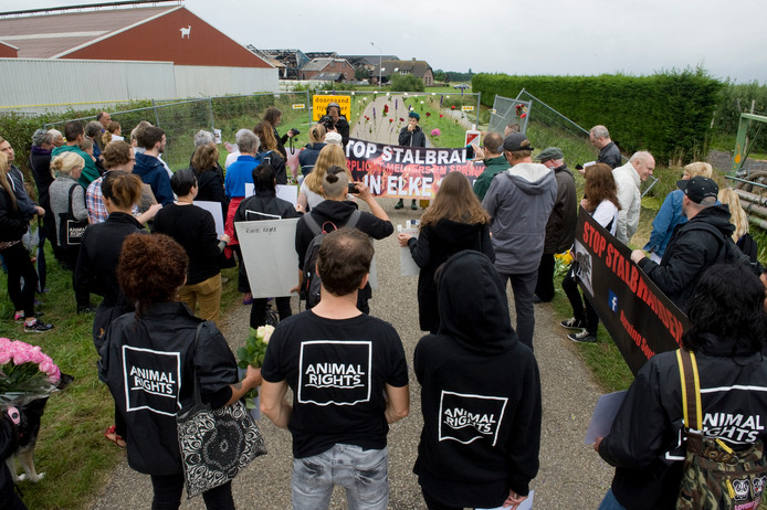 Protestbijeenkomst van dierenactivitsten op de Knorhof na de brand deze zomer.