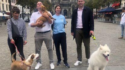 Hondeneigenaars lanceren label voor handelaars en 'City Dog Zone'