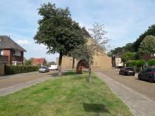 Apeldoorn geeft inwoners kans om buurtgroen zelf te onderhouden