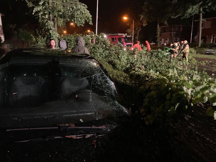 Een boom is op de Deventerweggevallen in Zutphen en beschadigde daarbij meerdere auto's.