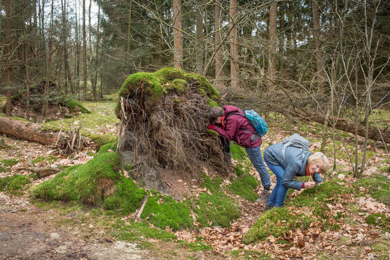 Susan Bol (rechts) tussen het mos. Beeld Jorgen Caris