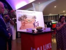 Ontwerp voor monument 60 jaar Molukkers in Winterswijk: 'Wij zijn de vruchten'