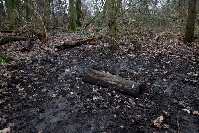 Graafsporen in de bosjes. Hier werden donderdag de wapens opgegraven.