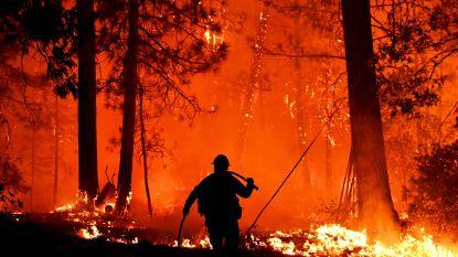 Californië kampt opnieuw met gigantische bosbrand, vlammen tot 90 meter hoog