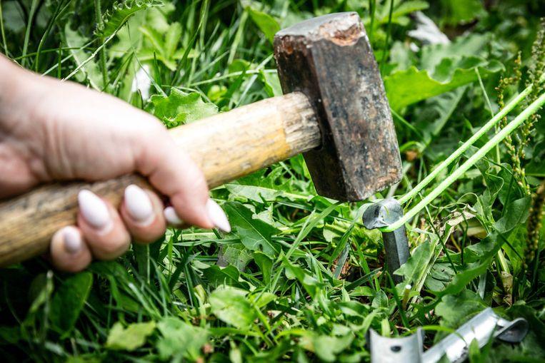 Een tentje opslaan in de Huwynsbossen zit er niet in