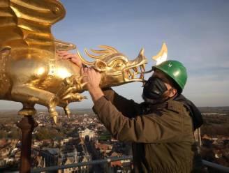 """Museummedewerker heeft eerste ontmoeting met de Ieperse draak: """"Chapeau voor de stellingbouwers"""""""