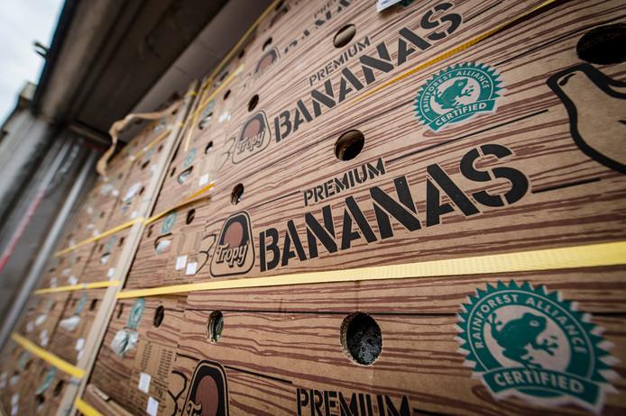 Foto ter illustratie. Dozen met bananen
