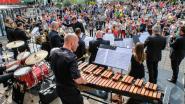 Pepingen viert Vlaamse feestdag met optredens op gemeenteplein