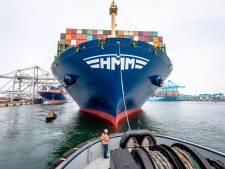 Waar gaan die containers opeens naartoe? Hoe één getal de sombere Rotterdamse haven vrolijk maakt