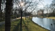 Nona organiseert festival voor podiumkunsten in Vrijbroekpark