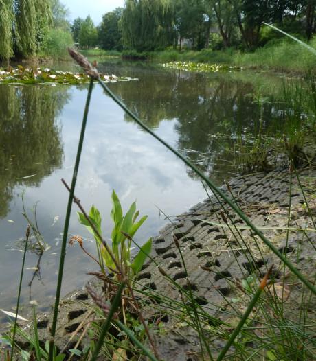 Waterstand visvijver Middelrode lager voor bouw vissteiger