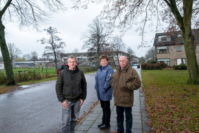 John van Dijk (links), Janine Halfwerk en Jaap van Tiel vinden dat het plan voor de bouw van drie appartementengebouwen van vier verdiepingen tussen de Geldersedijk en de Hollewand het gezicht op Hattem verpest.
