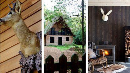 Deze inspirerende tips tonen hoe je de natuur in huis kunt halen