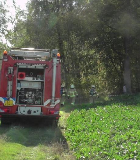 Bosbrand in Eefde staat los van warme nazomer