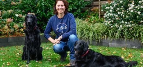 Hondenschool met lege handen na verkoop van trainingslocatie bij Ruitersportcentrum Harderwijk