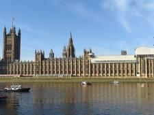 Palingen 'hyperactief' door cocaïne in Londense Theems