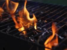 Houtskool voor barbecues vaak slecht voor milieu, dit zijn alternatieven