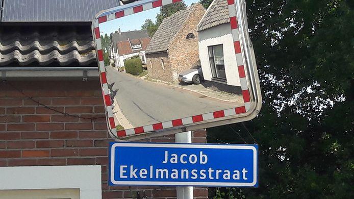 De rondweg om Nieuwaal, die er voor zorgt dat er geen vrachtwagens meer door het dorp rijden, is een van de resultaten van het herstructureren van de tuinbouw in de Bommelerwaard.