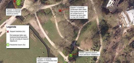 Zieke kastanjes moeten om in Park Eekhout