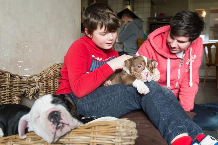 Een gestolen hondje is terug bij zorgboerderij in Baarle-Nassau. Sil (links) en Jeroen zijn blij dat het gestolen hondje terug is en aaien samen het beestje.