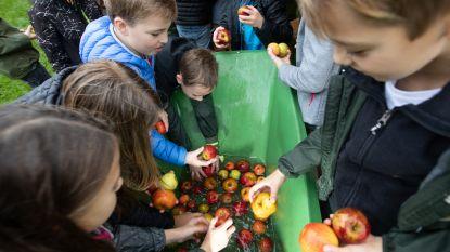 Ruim 450 kinderen op zesde Fruit-Doe-Dagen