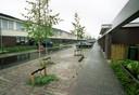 Eindhoven:  De Zandzwaluw in de wijk Meerhoven  Aangeplante berken zorgen  voor 'bosrijke' sfeer.