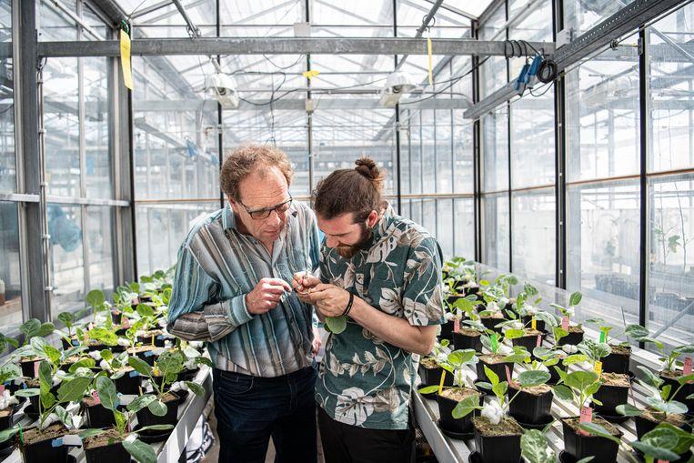 Peter Karssemeijer en hoogleraar Marcel Dicke. Beeld Koen Verheijden