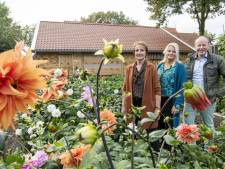 Nieuwe aanwinst voor dorpshoes Erve Boerrigter in De Lutte: 'De Greune Ster'