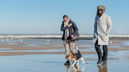 Valentijnsverblijf in Oostende? Dan krijg je gratis fotoshoot op strand