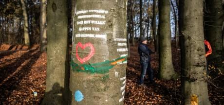 Partij voor de Dieren wil debat over omstreden kap van 800 bomen in Park Klarenbeek