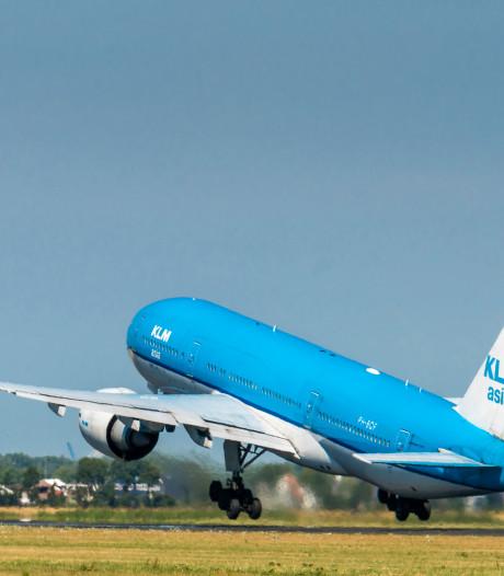 KLM moet dokken voor vervoer schildpadden onder ellendige omstandigheden