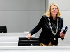 Den Haag blijkt een maatje te groot voor Krikke