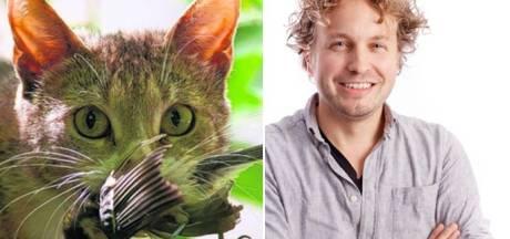 Kat & kwaad: lekker schelden is gemakkelijk, de kattenkwestie zelf niet