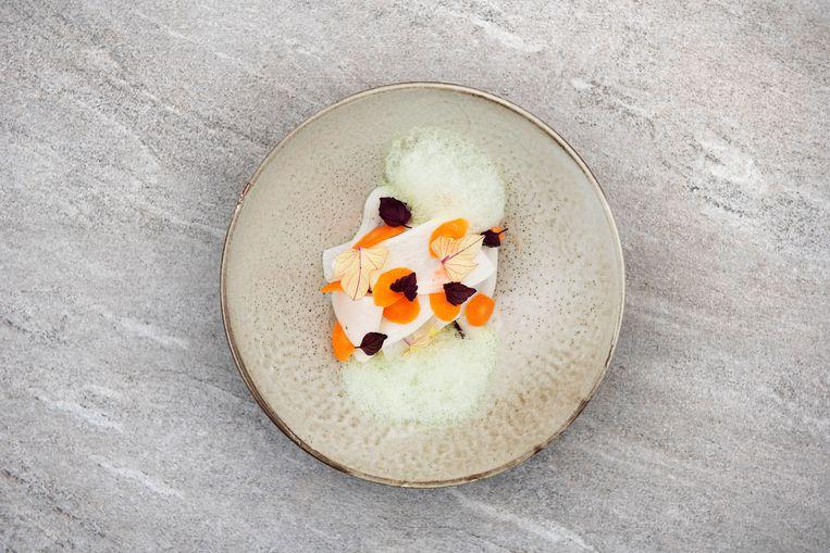 Romige risotto van parelgort, rammenas, bospeen, saus en olie van basilicum. Beeld Els Zweerink