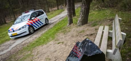 Vernieler monument Nicky Verstappen is psychotische man met belast verleden