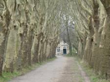 Auto blijft weg van landgoed Haanwijk en Out-Herlaer