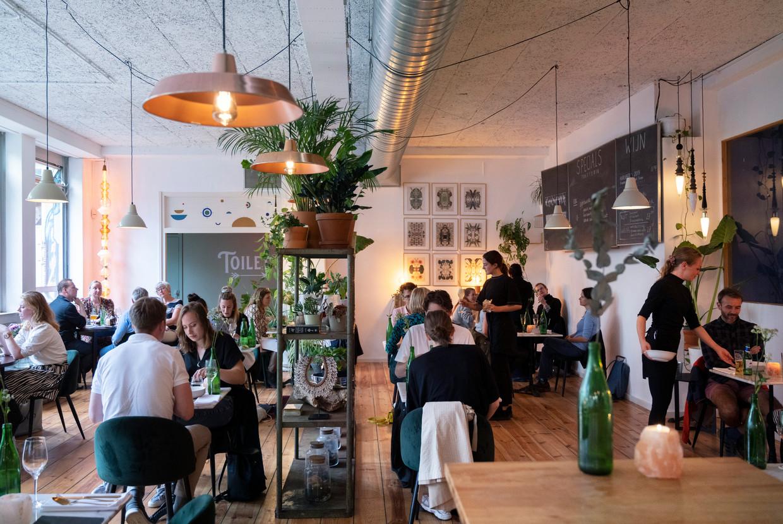 Studio Konijnenvoer in Arnhem. Beeld Els Zweerink