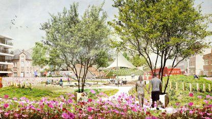Nieuwe invulling voor Gedempte Dender: Van grijze vlakte naar groene oase