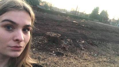 Oppositiepartij N-VA heeft vraagtekens bij bomenkap